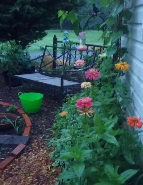 Garden-view-06-26-18-web